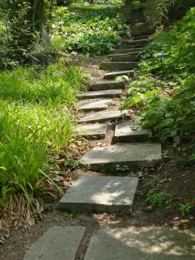 ... ještě zdolám pár schodů k horní cestě vedoucí nad arboretem ....