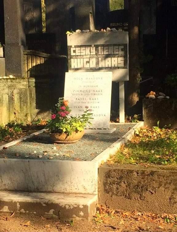 Hrob Huga Haase na židovském hřbitově v Brně. Autorka: Barbora Šturmová