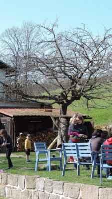 To je ona. U hostince U Lindmanů roste přes 70 let jabloň, která v roce 2020 vyhrála soutěž Strom roku. Na podzim je možné ochutnat v místním hostinci štrůdl z jejich jablek.