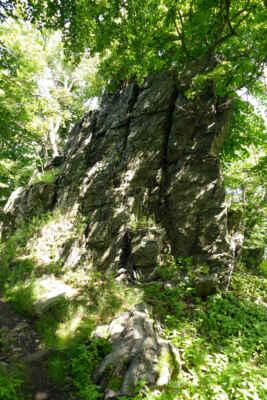 Národní přírodní rezervace Sedlo - Přírodní rezervace zahrnuje vrcholové partie výrazného zalesněného vrchu. Na strmých svazích se pod odkrytými skalami vytváří suťoviště a další útvary mrazového zvětrávání, například mrazové sruby. Oblast je porostlá přirozeným listnatým lesem, ve kterém převažuje dubohabřina. V bylinném patře můžete najít vzácnou květenu, roste zde hvězdnice alpská, kosatec bezlistý, prstnatec listnatý, lilie zlatohlávek, měsíčnice vytrvalá. Žije zde pestrá škála živočichů, například chráněný střevlík, sova kulíšek nejmenší nebo motýl bělopásek topolový.