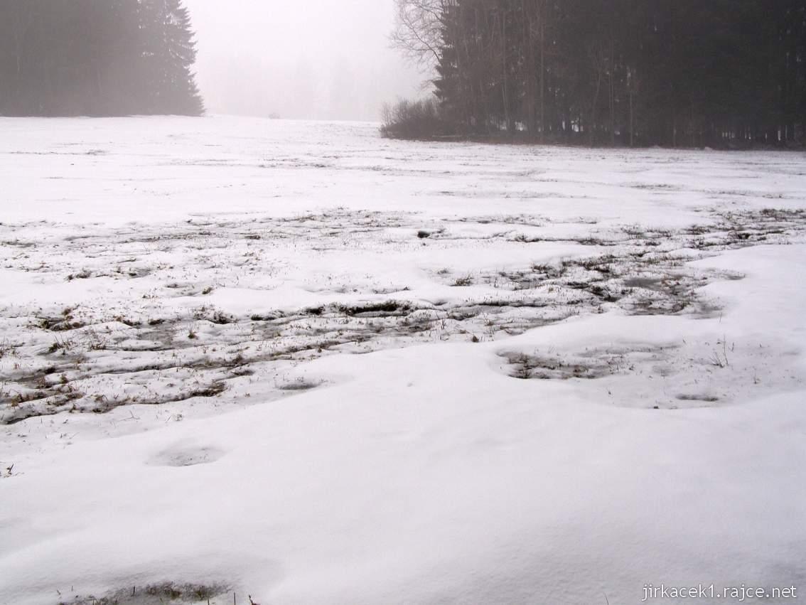 Bukovec - přírodní rezervace a rašeliniště - zimní pohled na louku