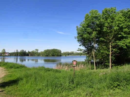 Horejší rybník - rybník je ornitologickou lokalitou, bylo zde napočítáno na 78 druhů ptactva. V rákosinách na břehu hnízdí mimo jiné chřástal vodní, moták pochop, v lesním porotu pak slavík obecný, cvrčilka říční, volavka popelavá, holub doupňák, žluna zelená, lejsek bělokrký. Les tvoří doubravy a olšiny s převažujícím dubem letním doplněným dalšími listnáči a s bohatým porostem bylin.